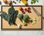 Thumb chef series 006 29180102 square