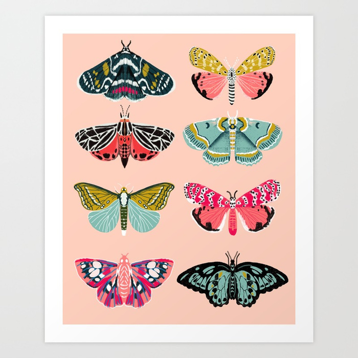 Lepidoptery no 1 by andrea lauren prints