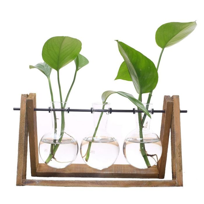 Hot sale plant terrarium with wooden stand glass vase holder for home decoration scindapsus container 3