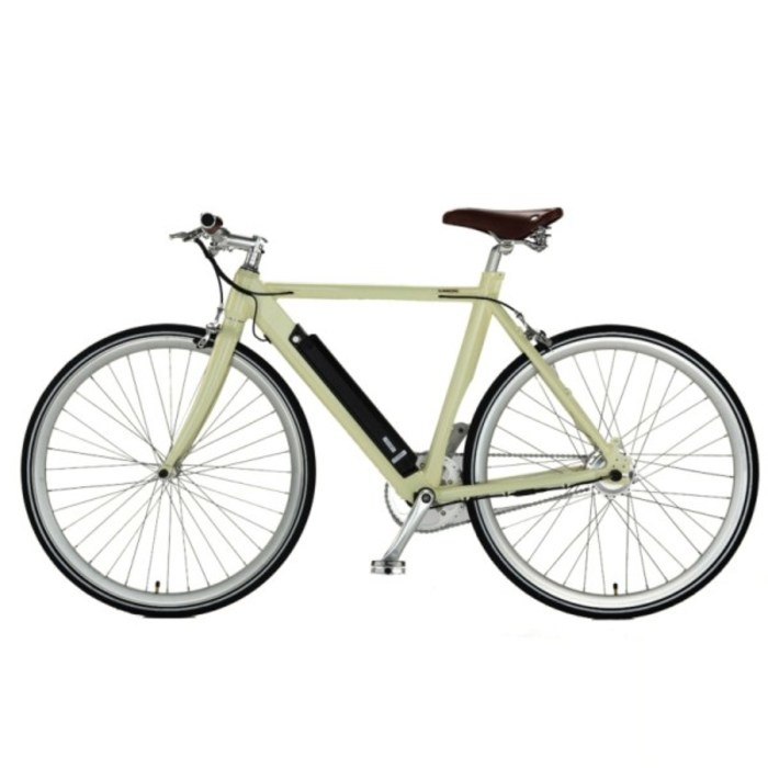 Ce approved aluminum retro design elekto bike 1